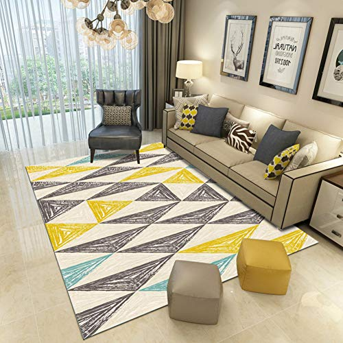 PLLXY Living Room Carpet,Silky Area Rug,Ultra Soft Rug Non Slip Hypoallergenic Mat Safe for Hardwood Floors and All Surfaces-C 80x160cm(31x63inch)