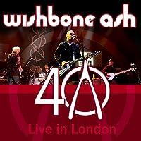 40Th Anniversary Concert - Liv