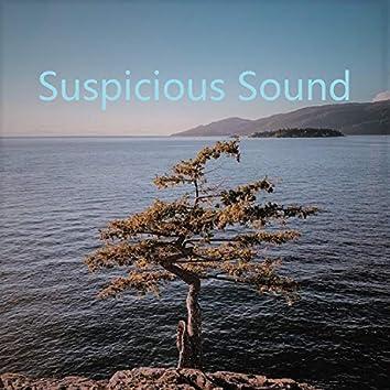 Suspicious Sound