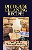 DIY House Cleaning Recipes: Fast Tips For Cleaning Everything: Become A Housecleaning Ninja (English Edition)