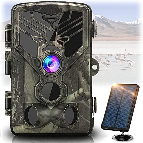 WLAN Wildlife Camera 20MP 1080 P con rilevatore di movimento a infrarossi visione notturna 120 ° grandangolare impermeabile IP66 per il monitoraggio degli animali selvatici