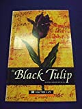 Black Tulip The MGR Beg (Guided Reader)