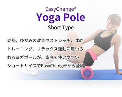 日本タイガー電器『EasyChangeヨガポールショート』