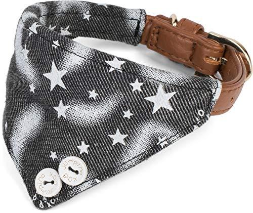 Puccybell sterren hondenhalsband met doek en hondenriem (1,2 m) in set, Bandana halsband en lijn voor kleine en middelgrote honden HLS007, Größe M: 31-38cm, Halsband grijs