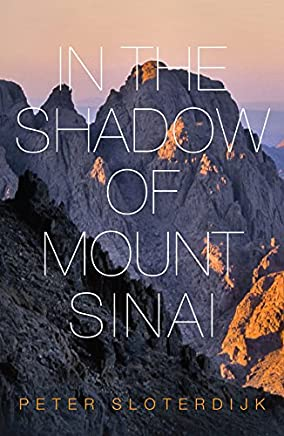 Amazon com: In The Shadow of Mount Sinai (9780745699240