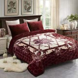 JML 10 Pounds Heavy Plush Soft Blankets for Winter, Korean Style Mink Velvet Fleece Blanket - 2 Ply A&B Printed Raschel Red Blanket, Dark Purple Floral