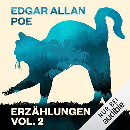 Edgar Allan Poe: Erzählungen 2 audiobook cover art