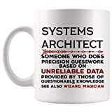 Funny Systems architect Mug Gift - 11Oz Coffee Cup - Best Gifts for Men Women T-Shirt Cups Mugs