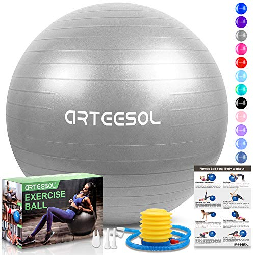 arteesol Gymnastikball, Balance Ball 45cm/55cm/65cm/75cm Yoga Ball mit Pumpe Anti-Burst Fitness Balance Ball für Core Strength (Silber, 65cm)