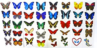 Temporary Butterfly Tattoos – (All 16 Sheets)