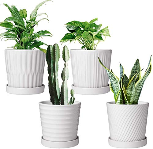 Flower Pots,6 Inch Succulent Pots with Drinage,Indoor Round Planter Pots with Saucer,White...
