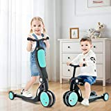 Kids Scooter, 2020 Beberoad 5-in-1 Kids Tricycle for 2-6 Years Old with Foldable Seat and Adjustable Height Handlebar, Lightweight Multi-Functional Boys and Girls Balance Bike(Sky Blue)