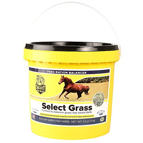 Select The Best Select Grass 6lb