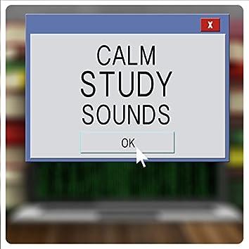 Calm Study Sounds