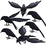 yofit Halloween Crow Decorations 6 Pack, Assorted Size Handmade Black Feather Birds Prop, Artificial Ravens Décor for Outdoor Indoor
