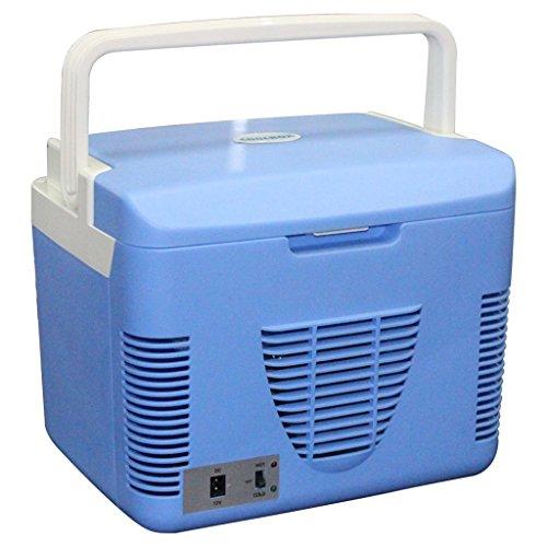 JCOCO 10L Car Refrigerator Car And Home Ostello a doppio uso Frigorifero refrigerato Mini orizzontale Frigorifero 12V / 24v Generale 220V (colore : 12v+220v)