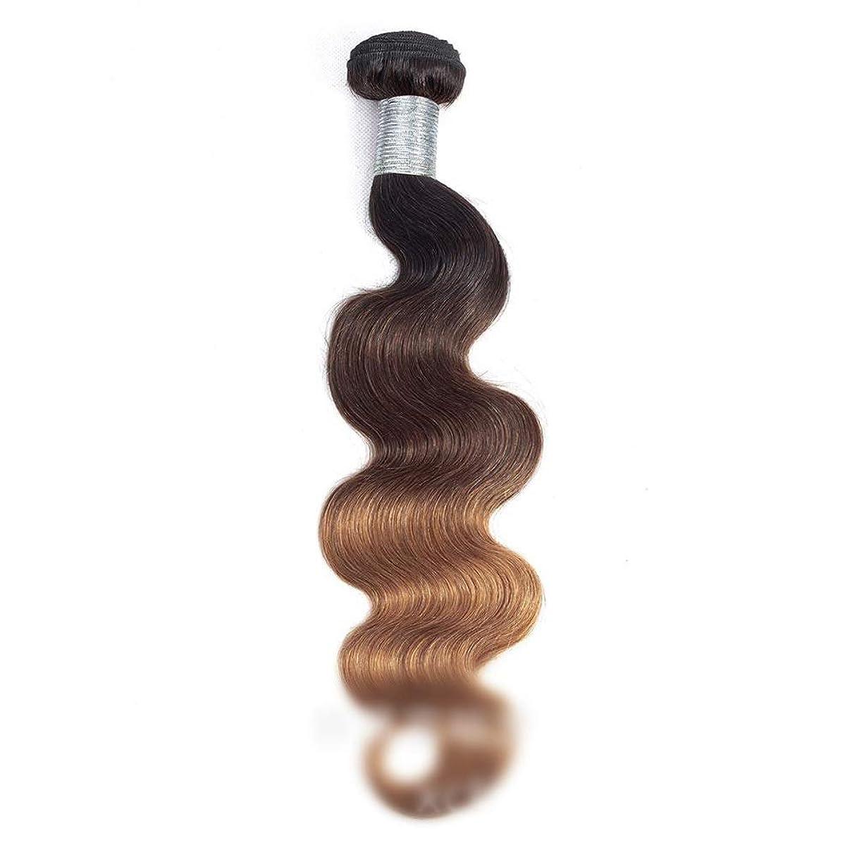 苦しめるスクラブ静かなHOHYLLYA 実体波髪の束オンブルブラジルバージン人間の髪の横糸 - 1B / 4/30 3トーン(1バンドル、10インチ-26インチ、110g)ロングカーリーウィッグ (色 : ブラウン, サイズ : 24 inch)