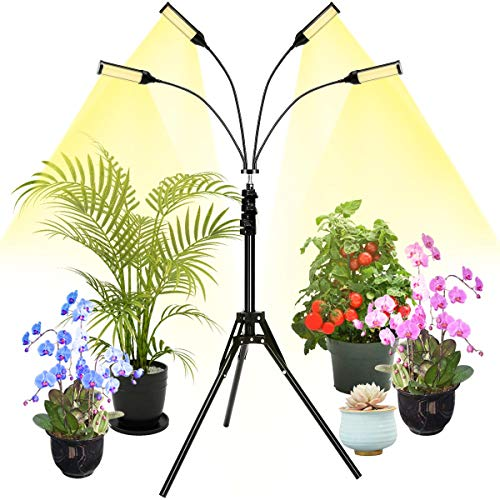 Plant Grow Light with Stand, ACCEDE LED Floor Grow Lights for Indoor Plants, Full Spectrum, 4-Head, 96W Grow Lamp with Timer for Seedling, Auto ON/Off, Adjustable Brightness & Stand & Gooseneck