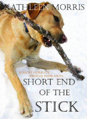 Short End Of The Stick - 10 Short Stories Of Spiritual Inspiration (Short Inspirations Book 2) (English Edition)
