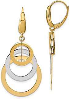 14k Two-tone Gold Polished Leverback Earrings
