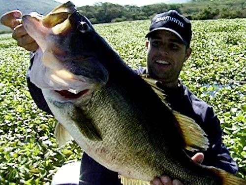 Big Bass Below the Border- Mazatlan