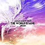 The World Is Mine (PSON Remix)