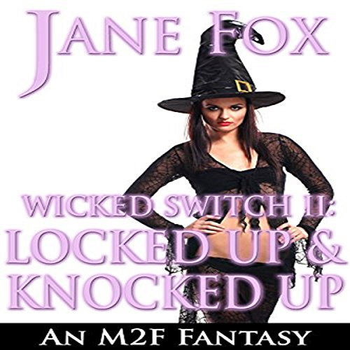 Wicked Switch II: Locked Up and Knocked Up audiobook cover art