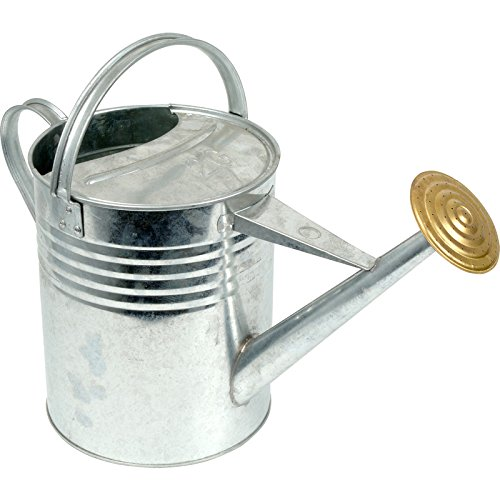 ARBORIA Garden Plant Flower Colour Galvanised Metal Steel Watering Can 9L 9 Litre / 2 Gallon with Brass Rose