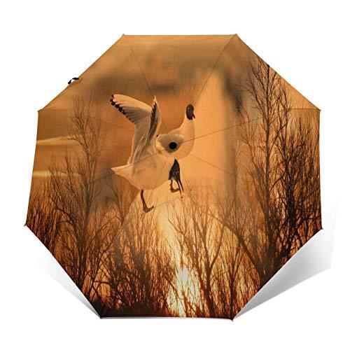 TISAGUER Paraguas automático de Apertura/Cierre,Colores Sofá Atardecer Colores Aves Oiseaux Naturaleza Composición,Paraguas pequeño Plegable a Prueba de Viento