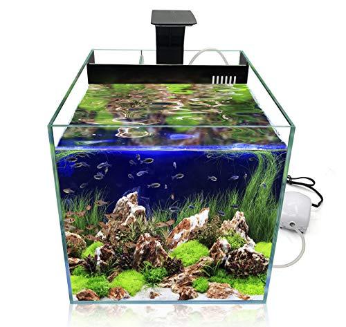GankPike リビングキューブ 300 アクアリウムセット 超クリアガラス水槽 オールインワン水槽 淡水魚水槽 (容量 約31L)