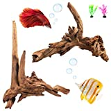 REOUITA 2 Pack Large Aquarium Driftwood, Natural Fish Tank Wood Reptile Climb Branches Decorations Size -10 in -15 in