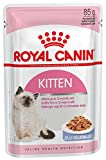 Royal Canin Kitten Instinctive Cat Wet Food Jelly Flavor (85g) - Pack of