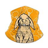 Akhy Multifunctional Headwear Boys Girl Face Mask Headband Neck Gaiter Easter Bunny Rabbit Carrot Balaclava for Teens