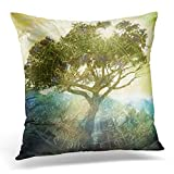Housse de coussin jet soleil qui brille à travers un arbre sauvage près des montagnes presque silhouette détail dans les zones d'ombre ancienne taie d'oreiller décorative décoration taie d'oreiller