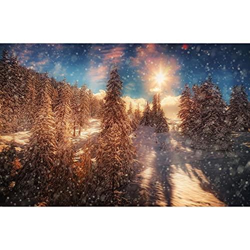 Accesorios de Fondo de fotografía Fondo de fotografía de Paisaje de Invierno Accesorios de Fondo de Estudio fotográfico de Vinilo A24 10x7ft / 3x2,2 m
