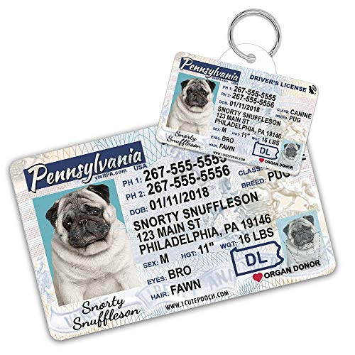 Pennsylvania Driver License Custom Dog Tag for Pets and Wallet Card - Personalized Pet ID Tags - Dog Tags for Dogs - Dog ID Tag - Personalized Dog ID Tags - Cat ID Tags - Pet ID Tags for Cats