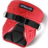 Comfort Fit Pets # 1 Rated Small Dog Harnesses Our small dog harness vest has padded interior and exterior cushioning ensuring your dog is snug and Take off! - Red - XS