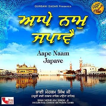 Aape Naam Japave