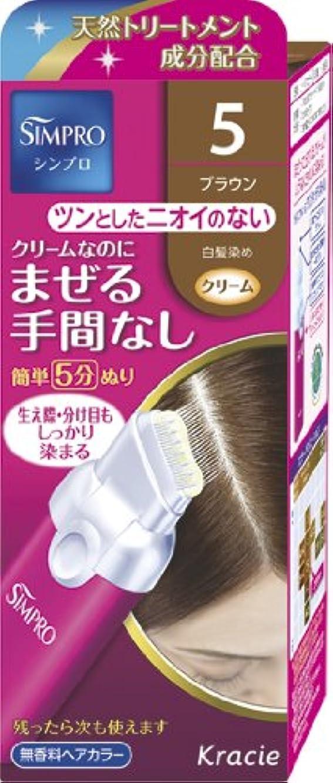 留まるランドマーク集計シンプロ ワンタッチ無香料ヘアカラー 5