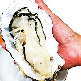 殻付き牡蠣 生食用 宮城県産 選別品 (特大 20個 約250g以上/個)