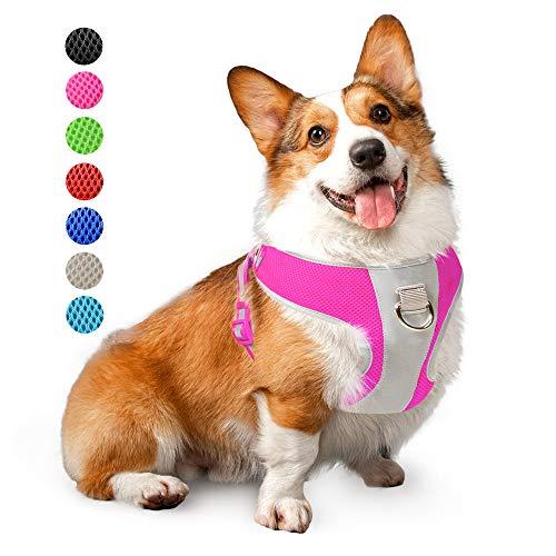 Arnés Perro Cachorro  marca PetiFine