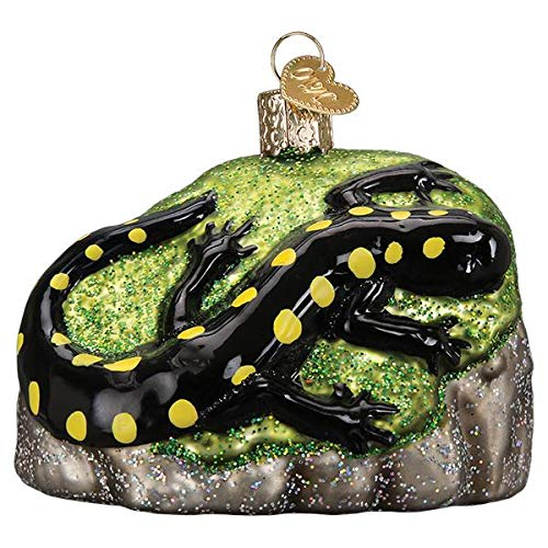 Old-World Christmas Glass Blown Ornament with S-Hook and Gift Box, Animal Selection (Salamander, 12561)