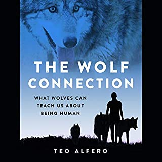 The Wolf Connection     What Wolves Can Teach Us About Being Human              By:                                                                                                                                 Teo Alfero                           Length: 8 hrs and 30 mins     Not rated yet     Overall 0.0