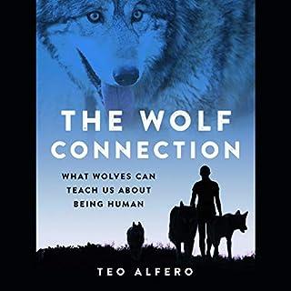 The Wolf Connection     What Wolves Can Teach Us About Being Human              De :                                                                                                                                 Teo Alfero                           Durée : 8 h et 30 min     Pas de notations     Global 0,0