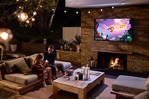 Outdoor TV vs Projector