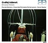 Adamek: Sinuous Voices