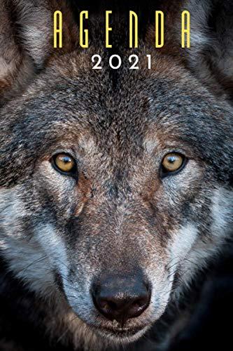 agenda 2021 lobo: agenda 2021 semana vista - planificador...