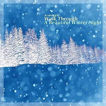 아름다운 겨울밤을 걷다