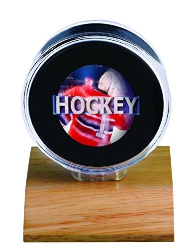 Ultra Pro NHL Puckhalter, klein, transparent