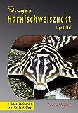 *Ingos Harnischwelszucht